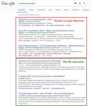 Wyniki naturalne Google